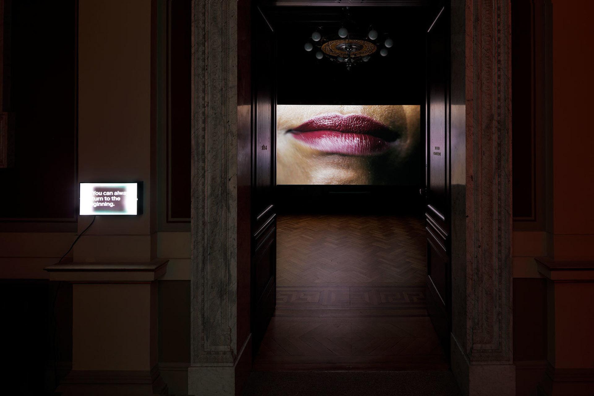 1CompassionFatigueIsOverCandice-Breitz_Sweat_2018_installation-view_-c_GalerieRudolfinum_Photo-Martin-Polak.jpg