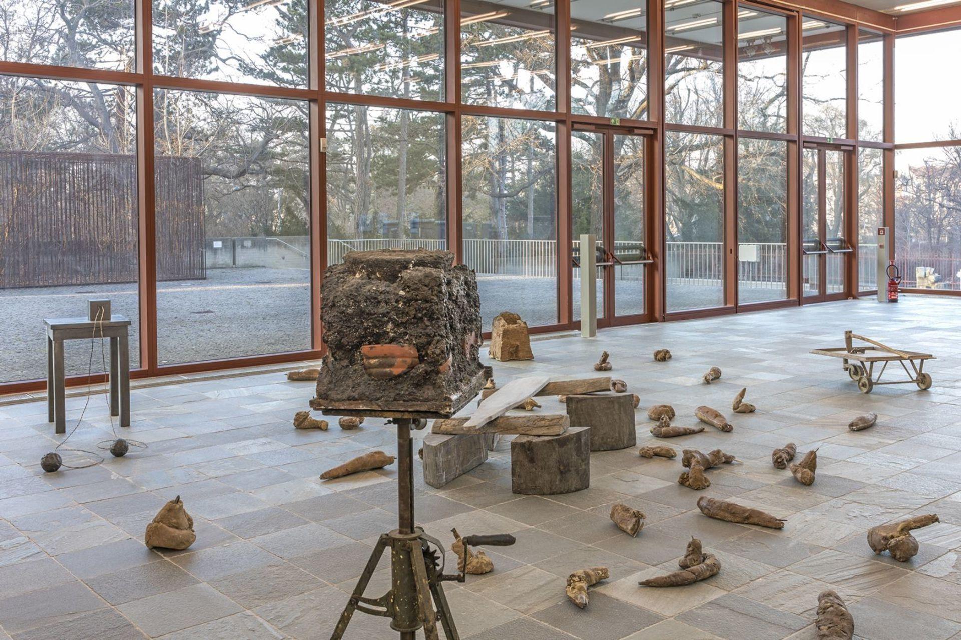 VYSTAVA VIDEN_609983 - Beuys Presse 3a.jpg